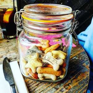 jar of dog biscuits